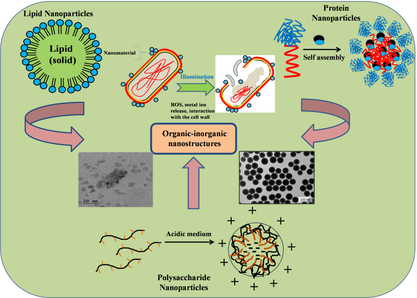 Organic-inorganic antimicrobial nanostructures for health